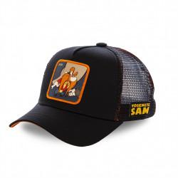 capslab sam1